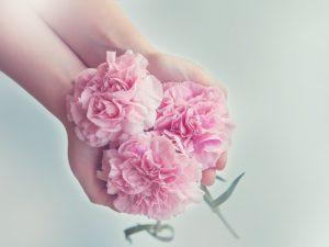 【お受験】世界に一つだけの花